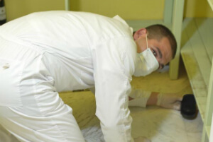 Pest Control Services London IASC Ltd.