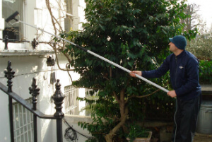 Window Cleaning Services Docklands SE16 Quality Property Care Ltd.
